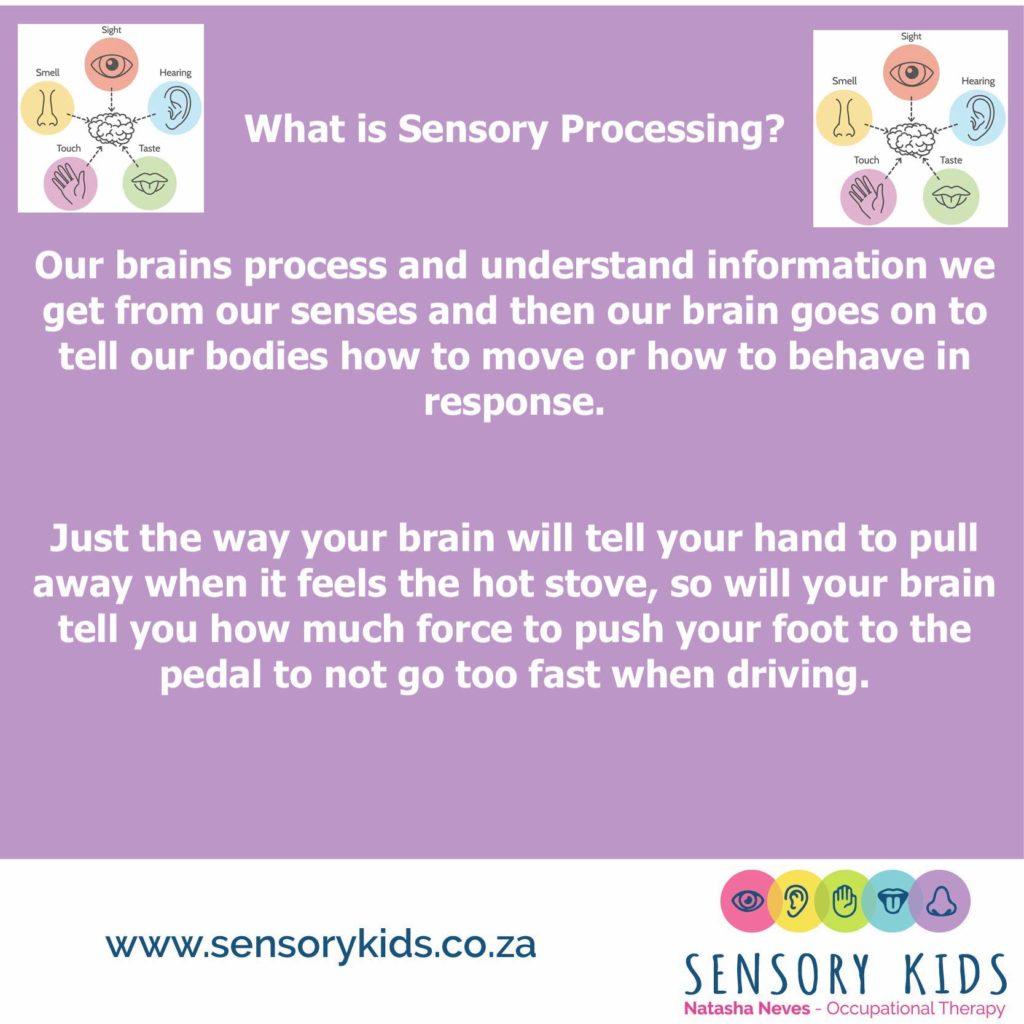 Sensory processing post